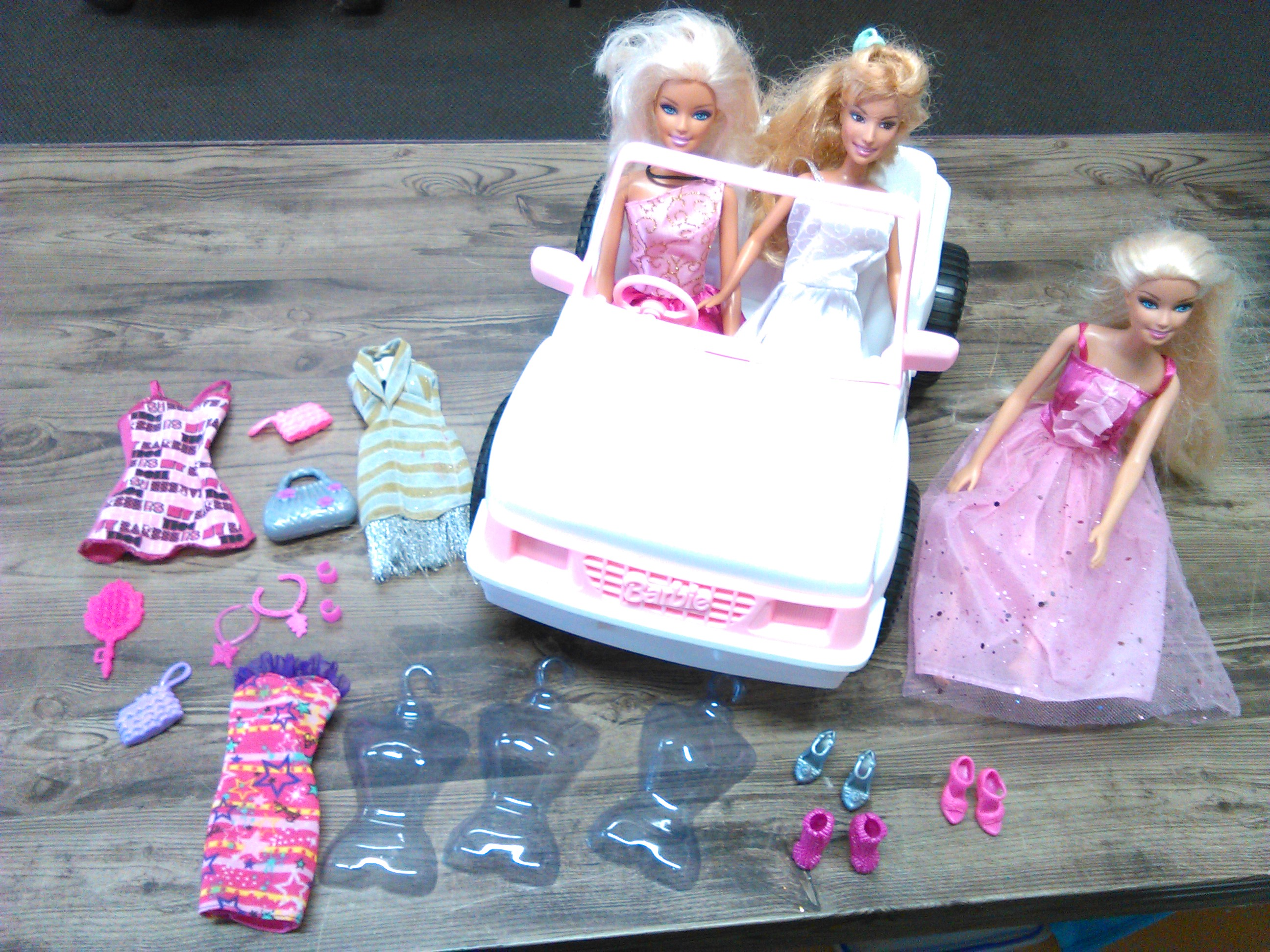 Barbie beach and party photo